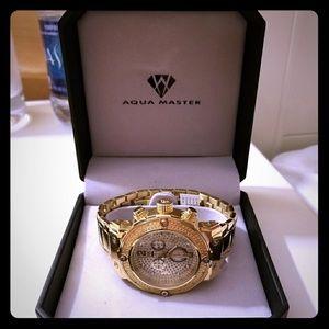 Aqua Master Watch